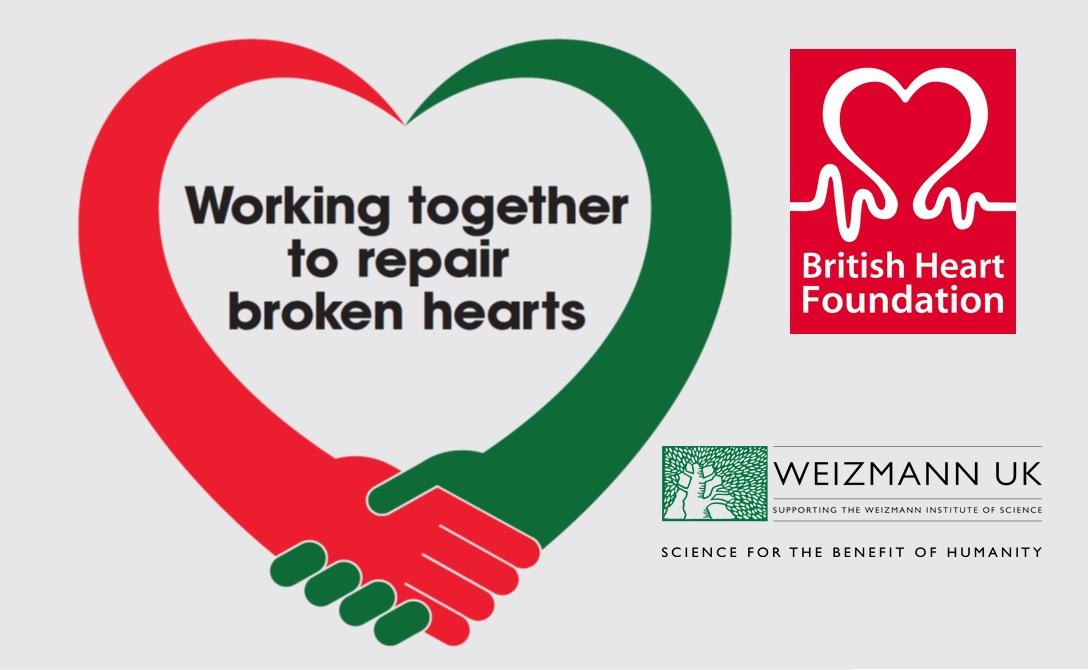 Bhf For Web3